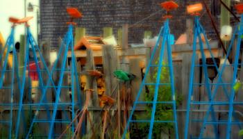 Flickr-Louis-Selvitella-artificial-intelligence.jpg